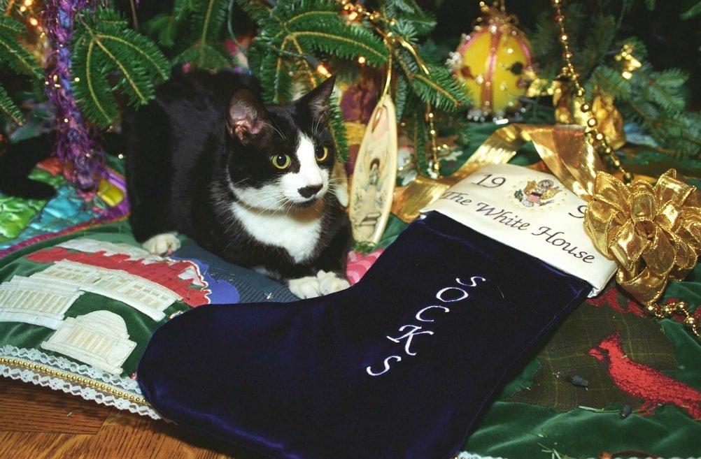 stocking christmas traditions around the world